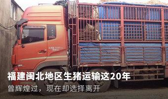 曾辉煌过,福建闽北地区生猪运输这20年