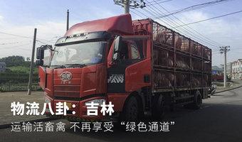 物流八卦:吉林运输活畜禽不再享受绿通