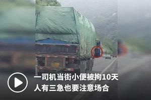一司机当街小便被拘10天 人有三急也要注意场合