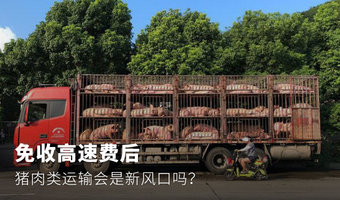 免收高速费后,猪肉类运输会是新风口吗