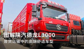 普货运输高端舒适车 图解陕汽德龙L3000