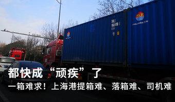 """上海港提箱落箱难、司机难快成""""顽疾"""""""